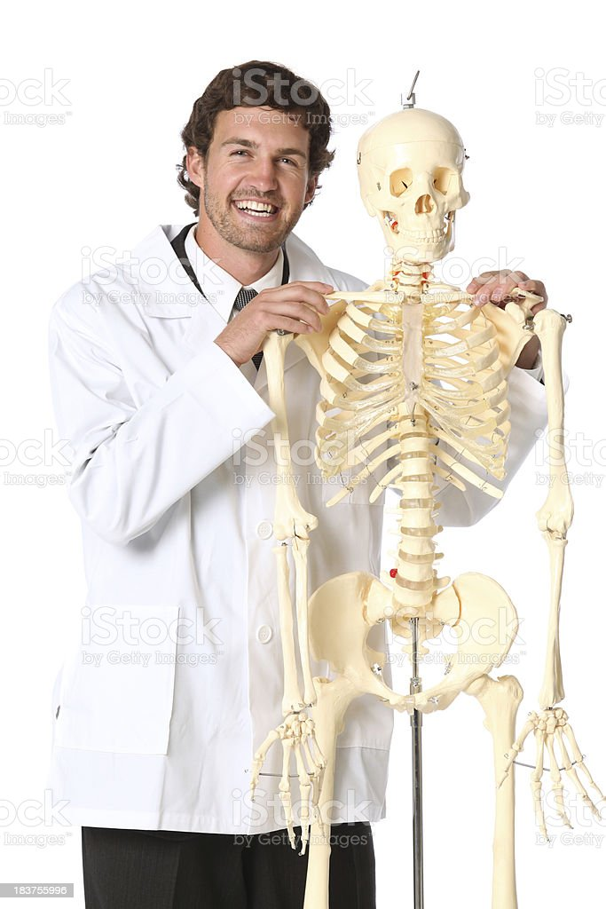 Medical doctor posing with human skeleton royalty-free stock photo