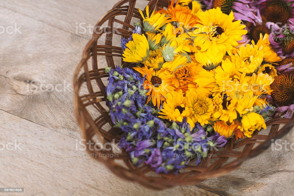 Medical Home Herbs Harvested in Wooden Basket stock photo