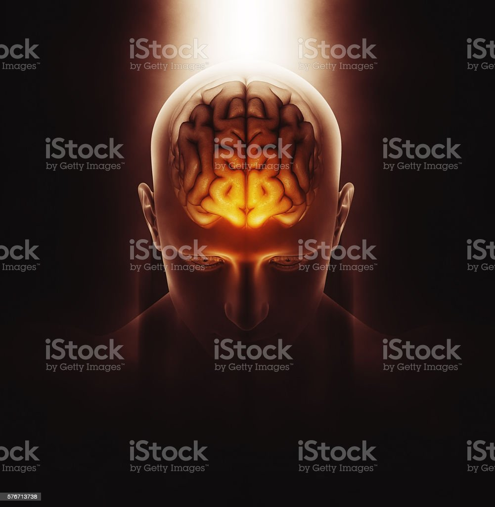 3D medical image of male figure with brain stock photo