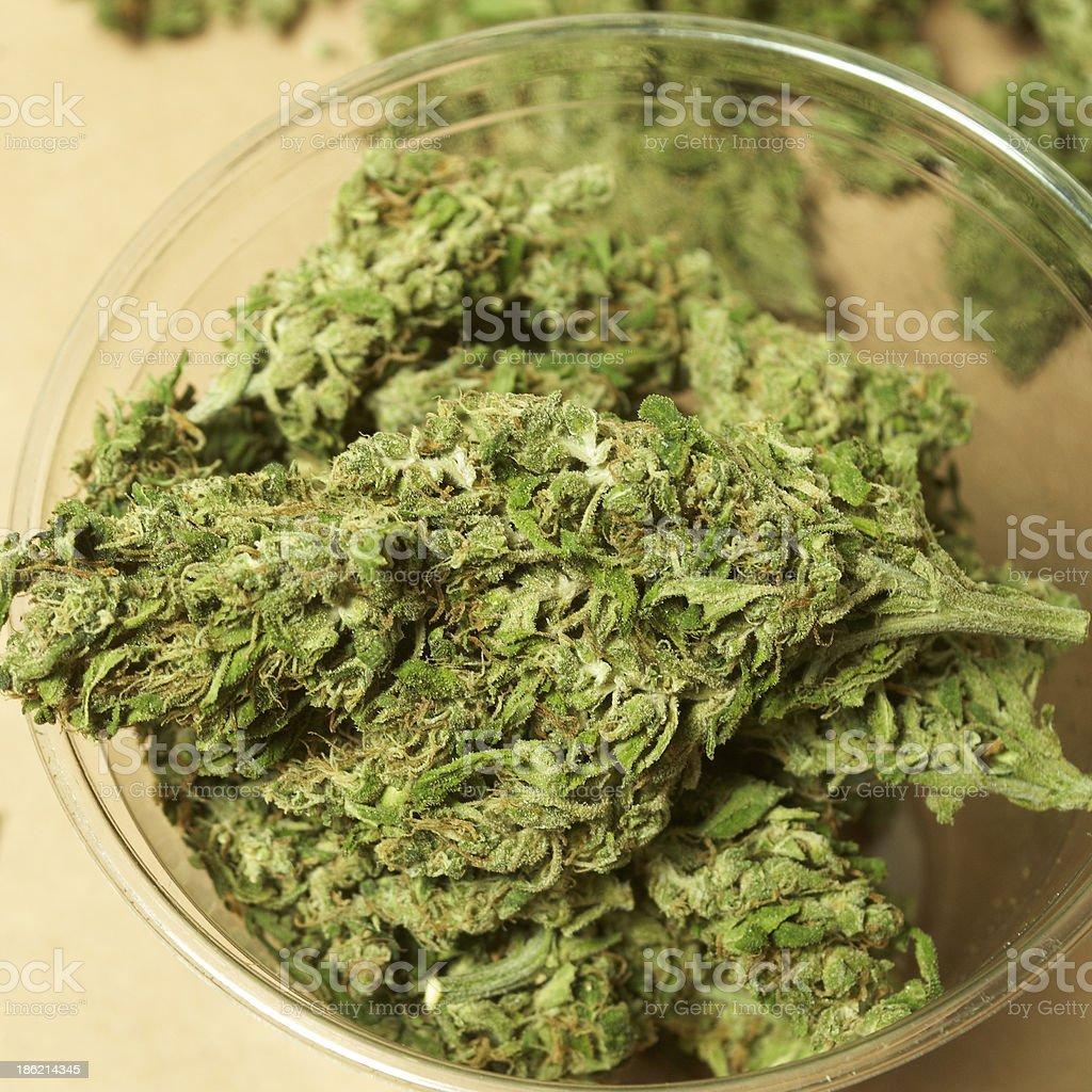 Medical Marijuana Background royalty-free stock photo