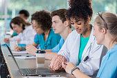 Medical school classmates study human brain model together