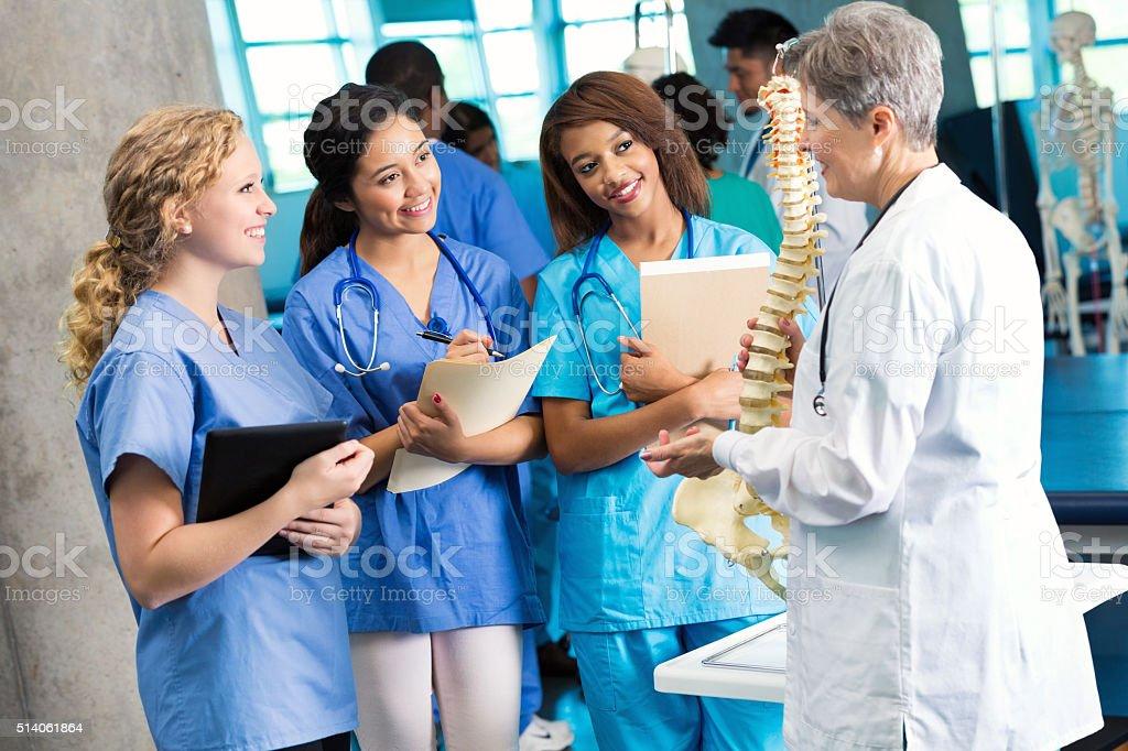 Medical school professor uses skeletal spine model to teach students stock photo