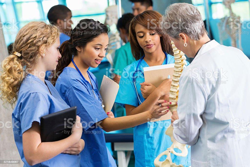 Medical school professor using model to teach nursing students stock photo