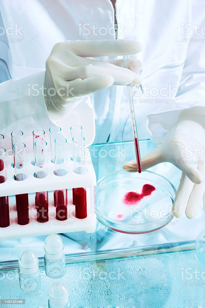 A medical technologist placing blood on a petri dish royalty-free stock photo