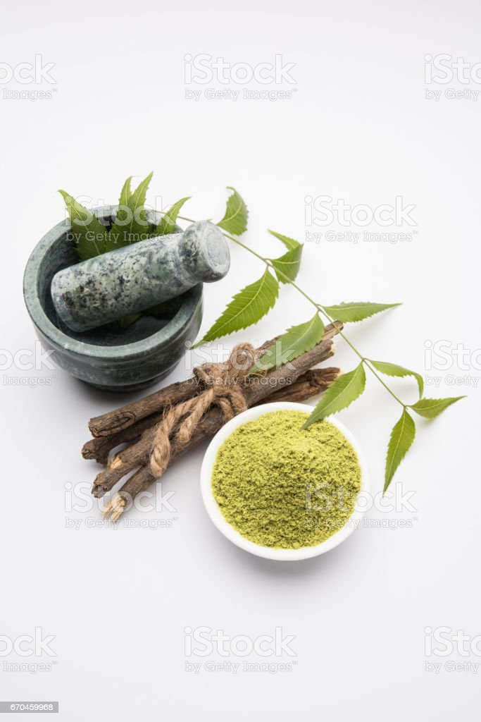 Medicinal Ayurvedic Azadirachta indica or Neem leaves in mortar and pestle with neem paste, juice and twigs, powder and oil, selective focus stock photo