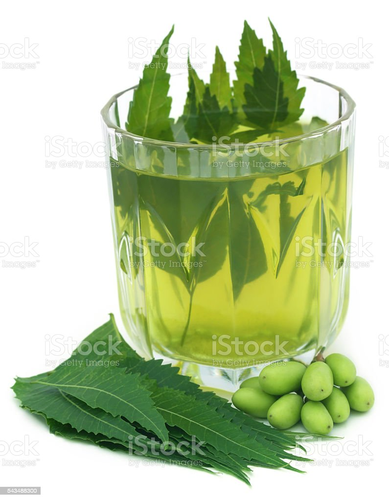 Medicinal neem extract with fruits and leaves stock photo