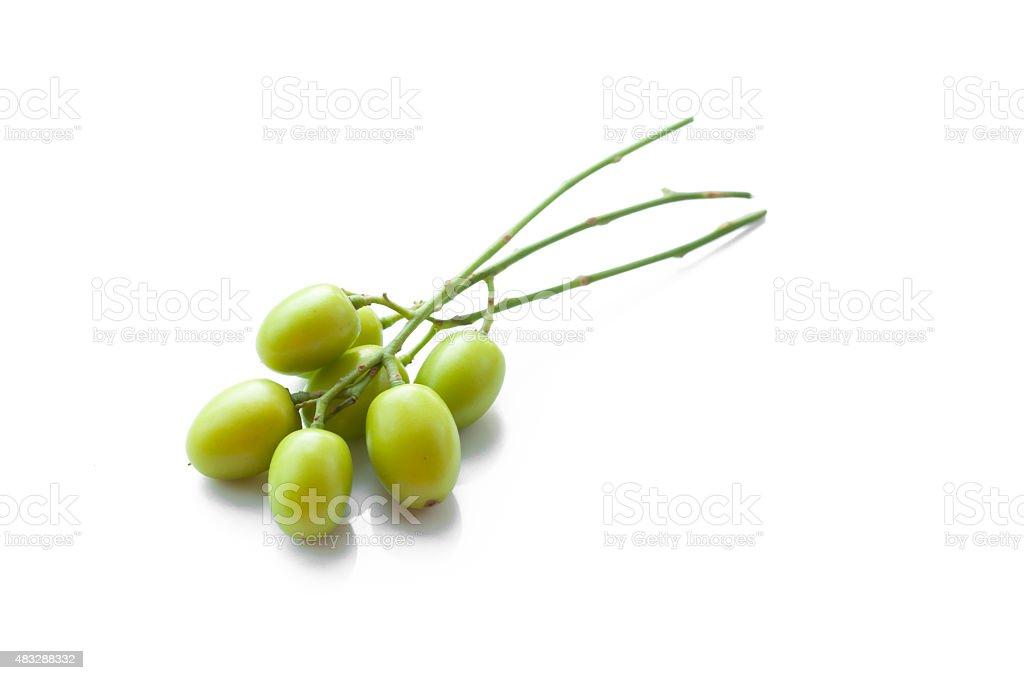Medicinal neem fruit on white background stock photo