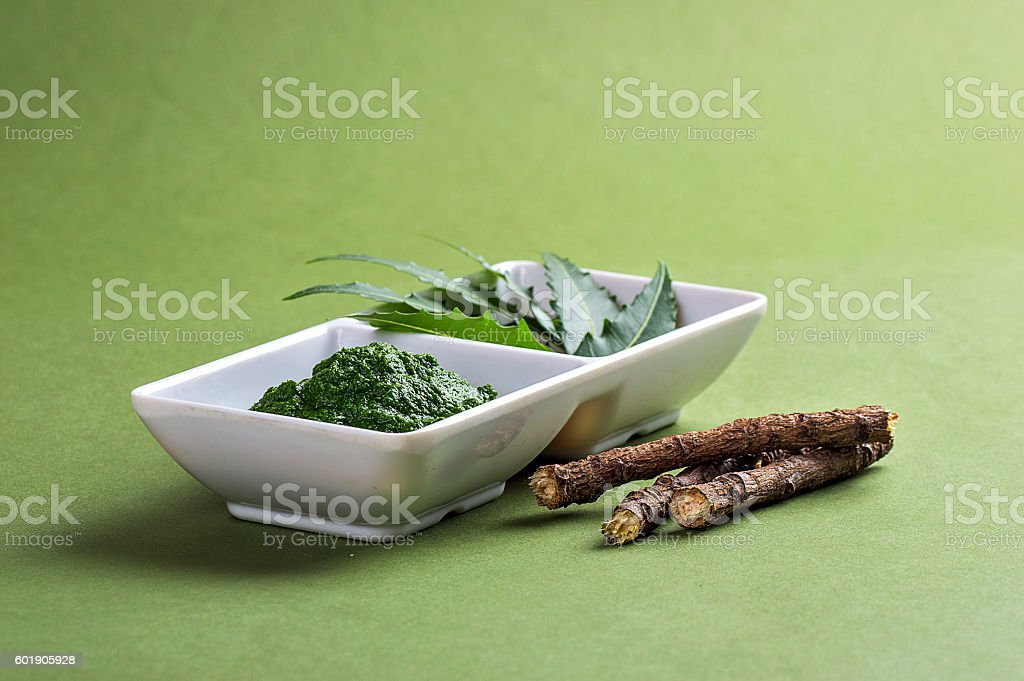 Medicinal Neem leaves paste and leaves with twigs stock photo