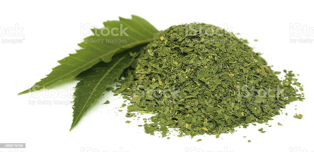 Medicinal neem leaves with dried powder stock photo
