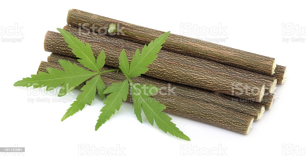 Medicinal neem leaves with twigs royalty-free stock photo