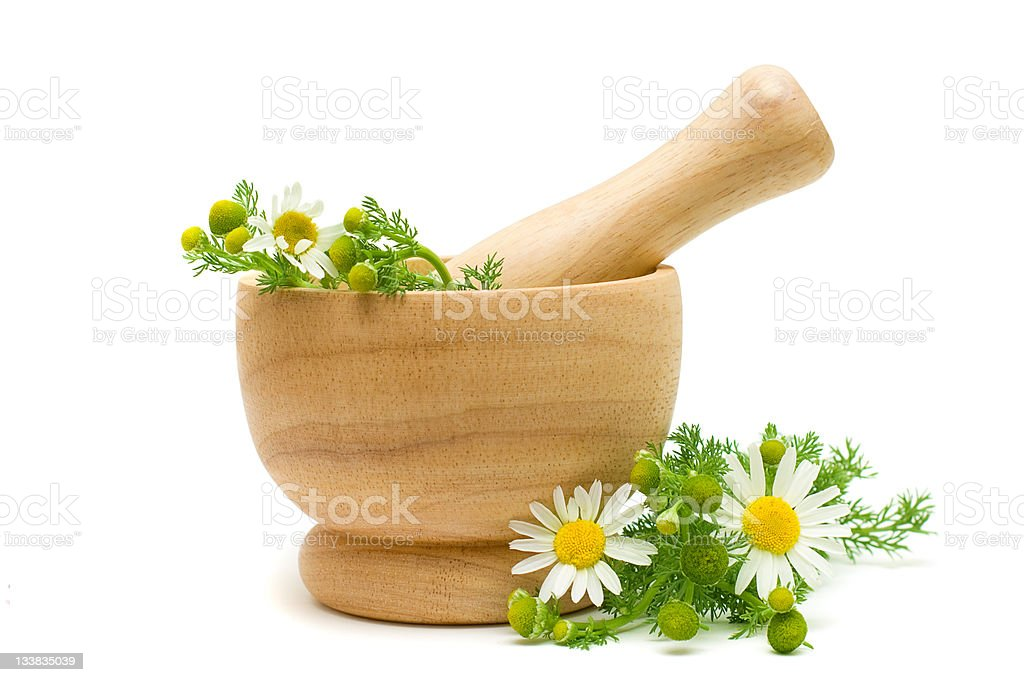Medicine Camomile flowers - Herbal Treatment stock photo