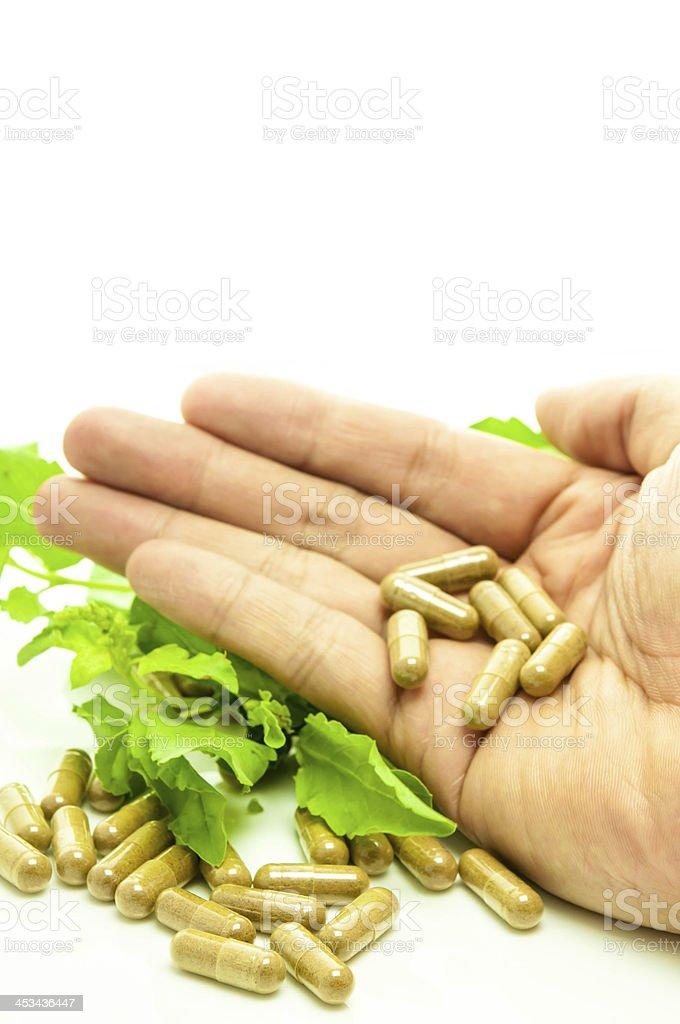 Medicine capsule herb. stock photo