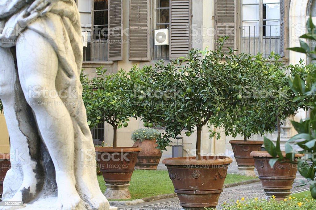 Medicis palace garden stock photo