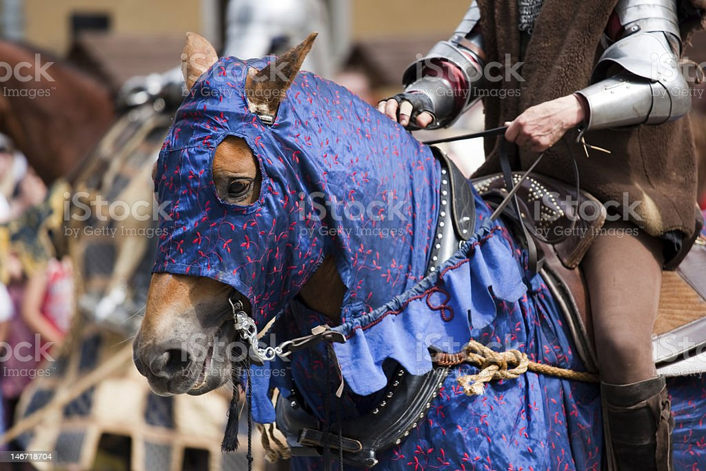 Medieval horse royalty-free stock photo