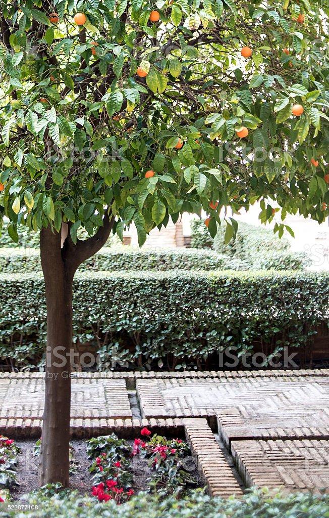 Medieval Moorish garden, Aljaferia Palace, Zaragoza, Spain stock photo