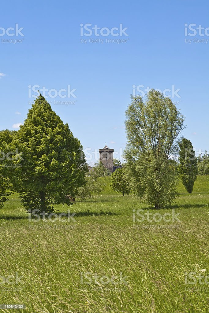 medieval tower - seen from the Rhine meadows royalty-free stock photo