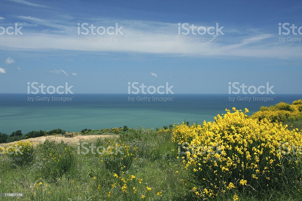 Mediterranean Coast in Italy royalty-free stock photo