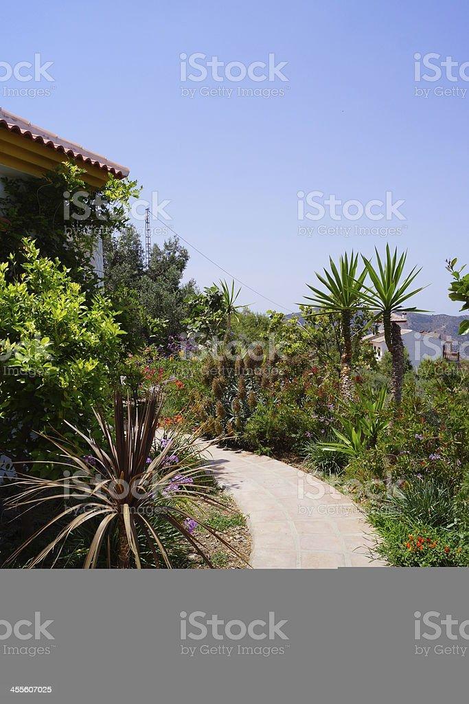 Mediterranean garden stock photo
