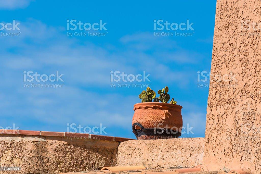 Mediterranean motif, flowerpot with cactus. stock photo