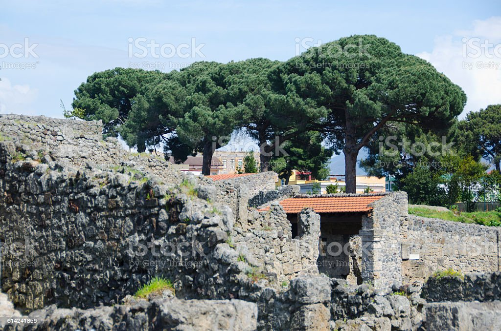 Mediterranean Pine Trees Overlooking Pompeii, Italy stock photo