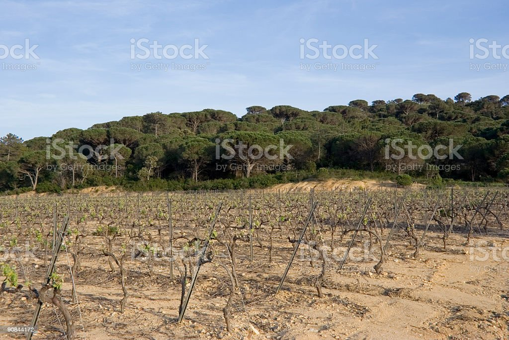 mediterranean scenery royalty-free stock photo