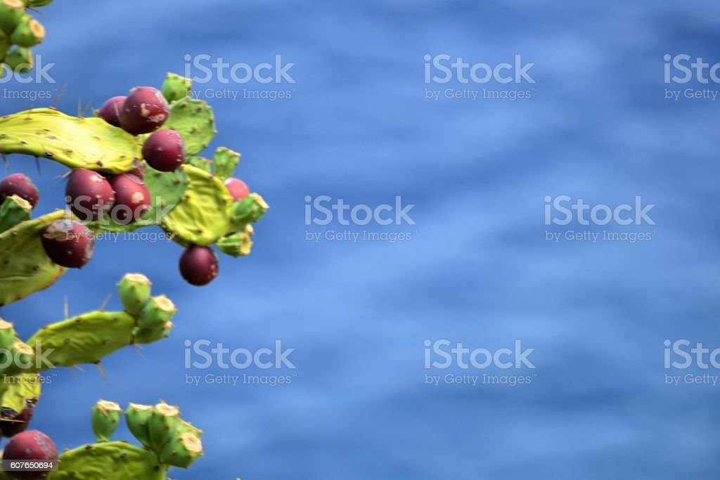 Mar Mediterraneo stock photo