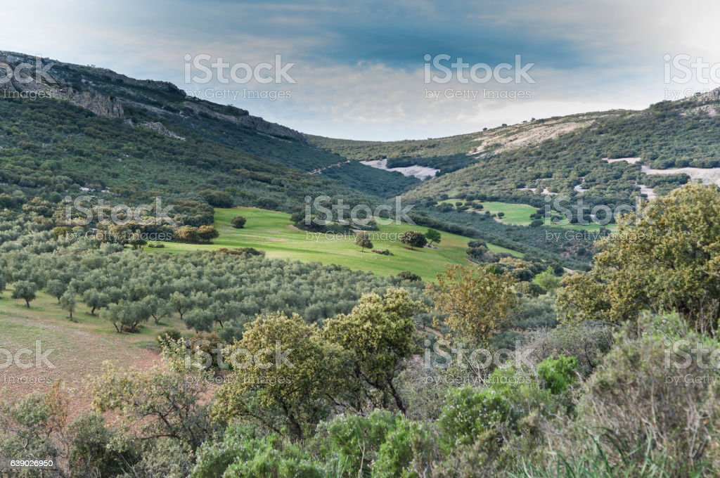 Mediterranean shrublands and croplands over quartzite Mountains stock photo