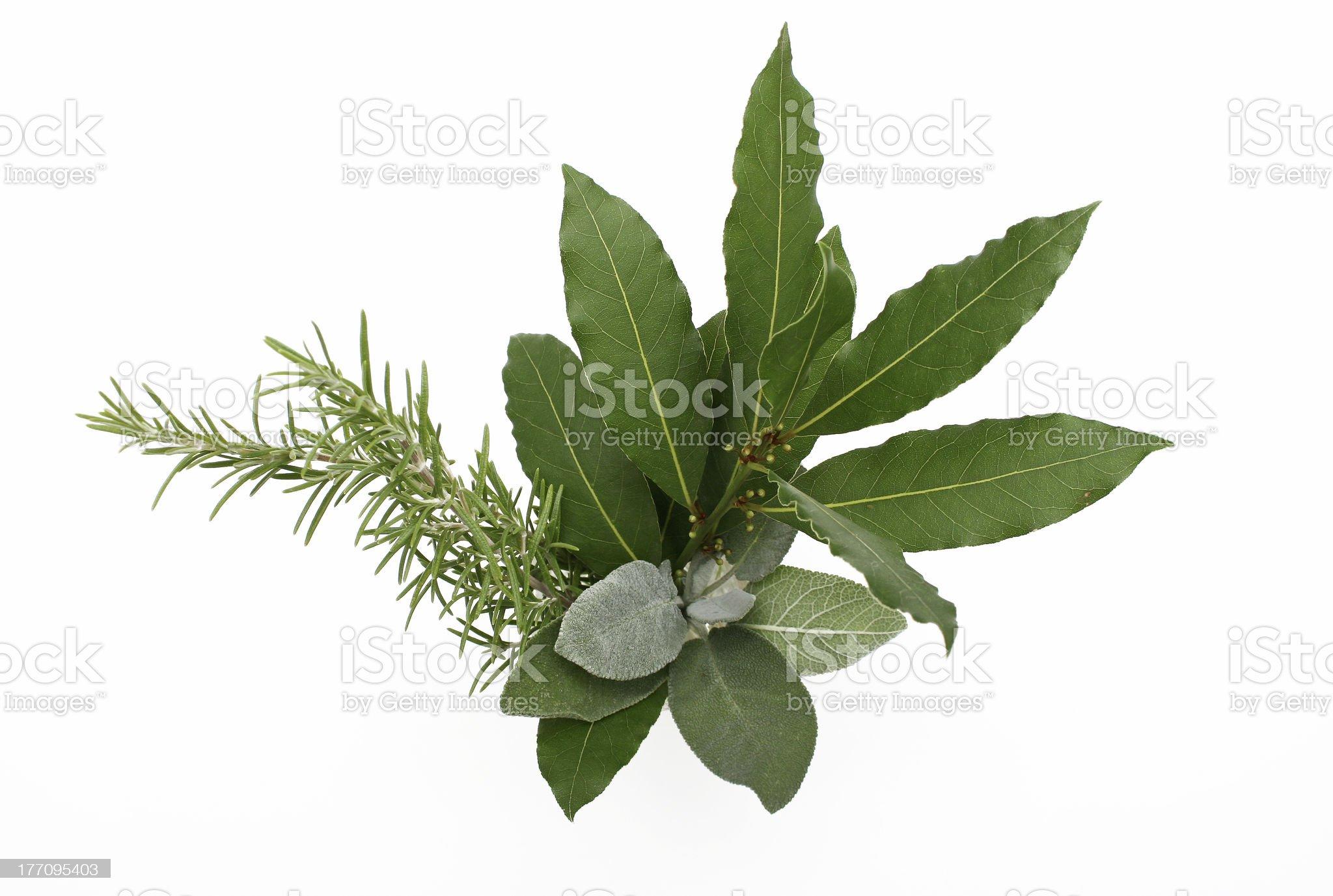 Mediterranean Spices royalty-free stock photo