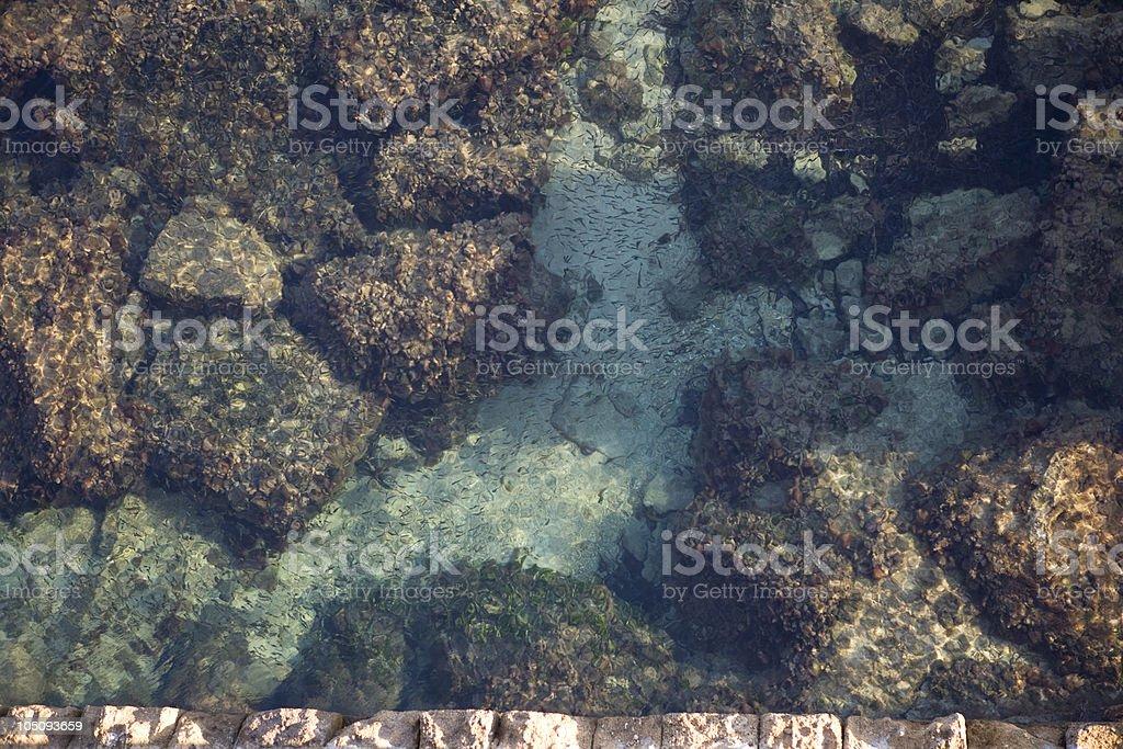 Mediterranean tide pool royalty-free stock photo
