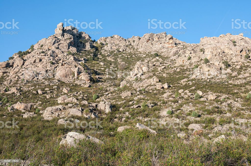 Mediterranean vegetation in Sierra de los Porrones stock photo