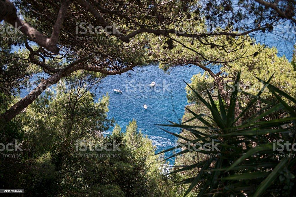 Mediterranean view of Capri Island, Italy stock photo