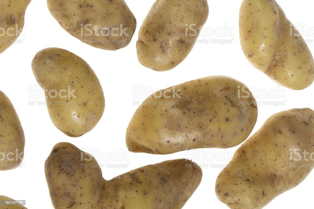 Medium group of golden fingerling potatoes on white background stock photo
