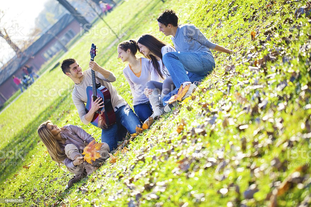 Medium group of young people relaxing in park with guitar. royalty-free stock photo