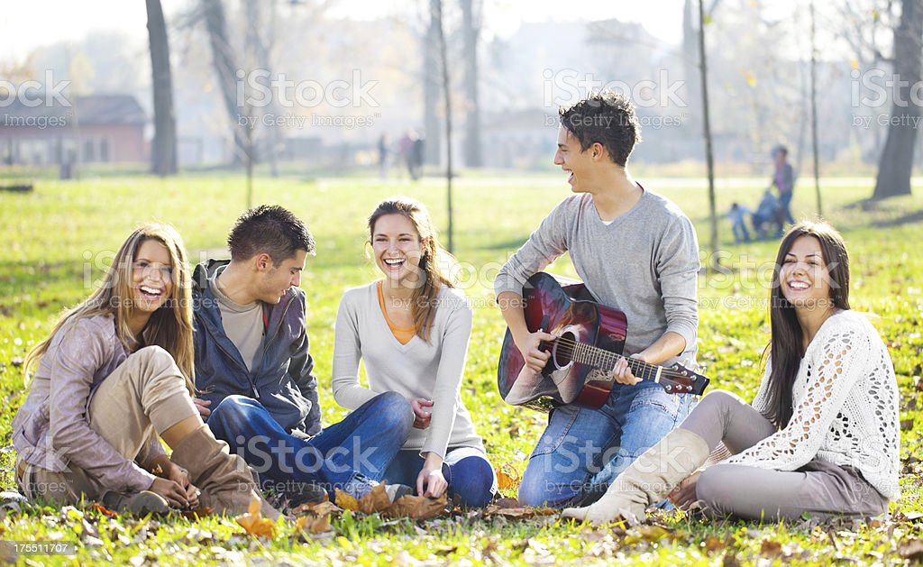 Medium group of young people relaxing in the park. royalty-free stock photo