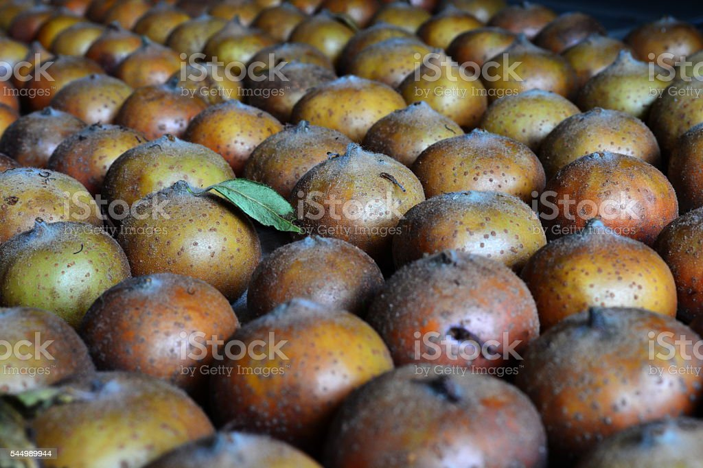 medlar fruits laid out to mature stock photo
