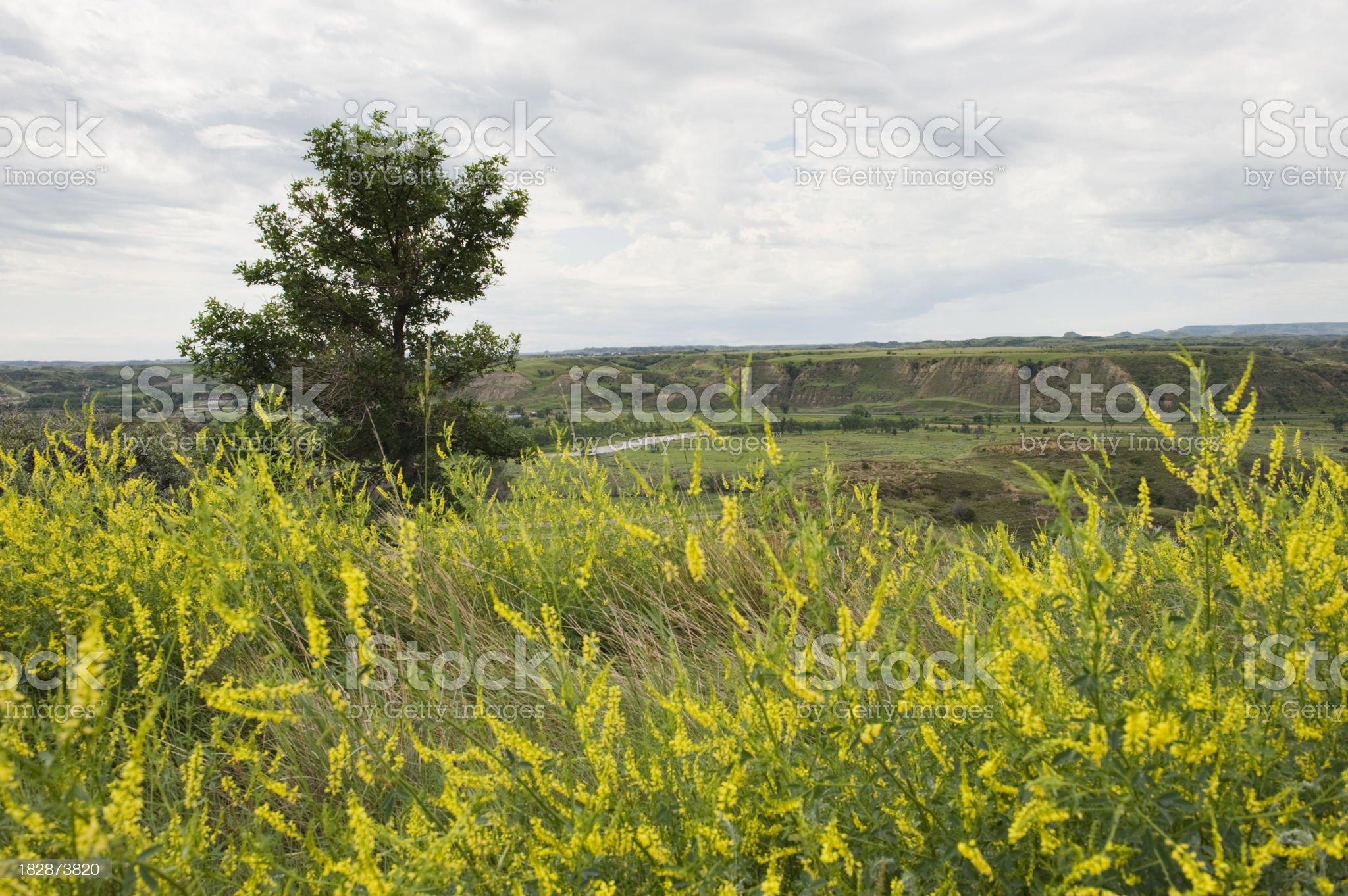 Medora Valley Views royalty-free stock photo