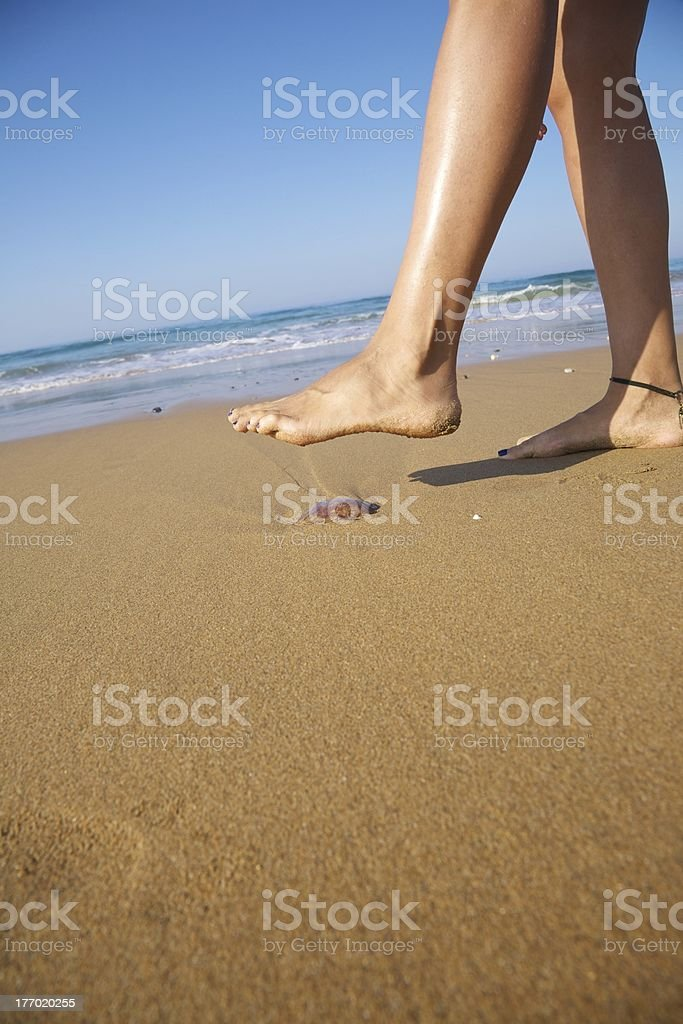 medusa down foot stock photo