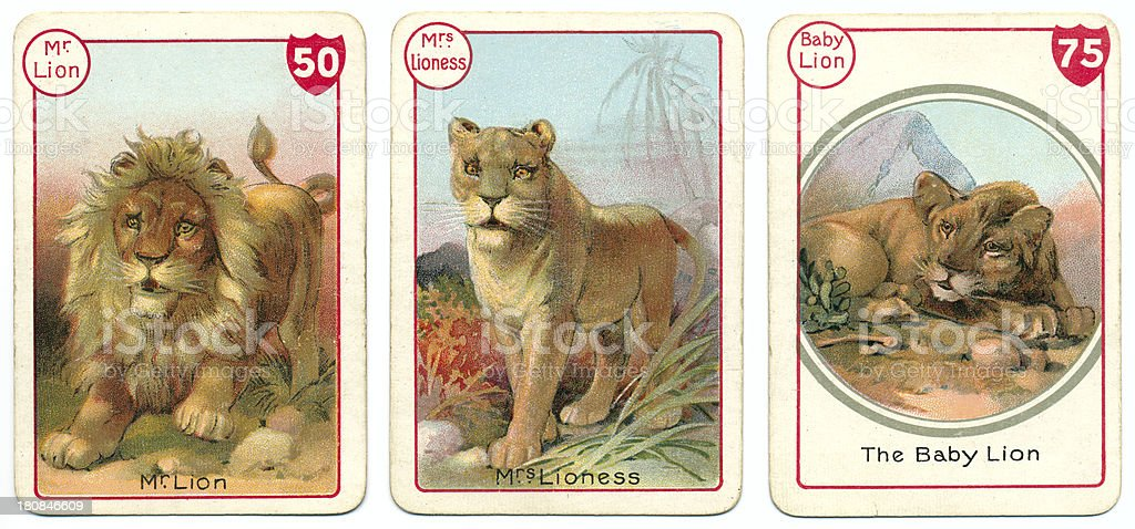 Three lion playing cards Victorian animal families game vector art illustration