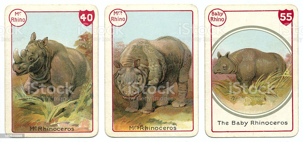 Three rhinoceros playing cards Victorian animal families game vector art illustration