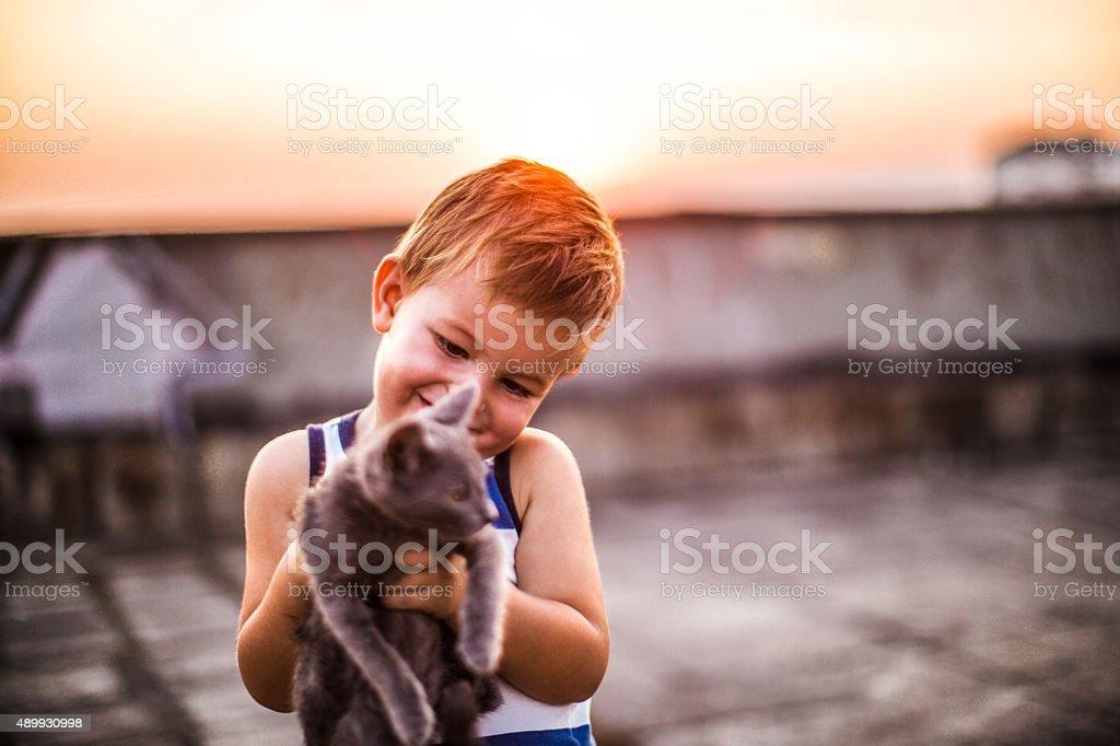 Meeting my new pet stock photo
