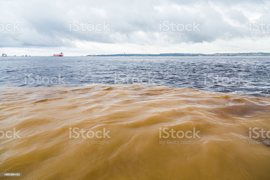 Meeting of Waters in Manaus, Brazil stock photo