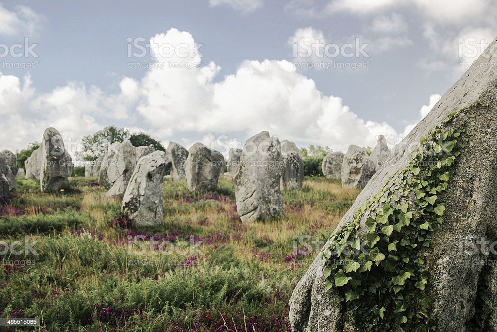 Megalithic menhirs in Carnac stock photo