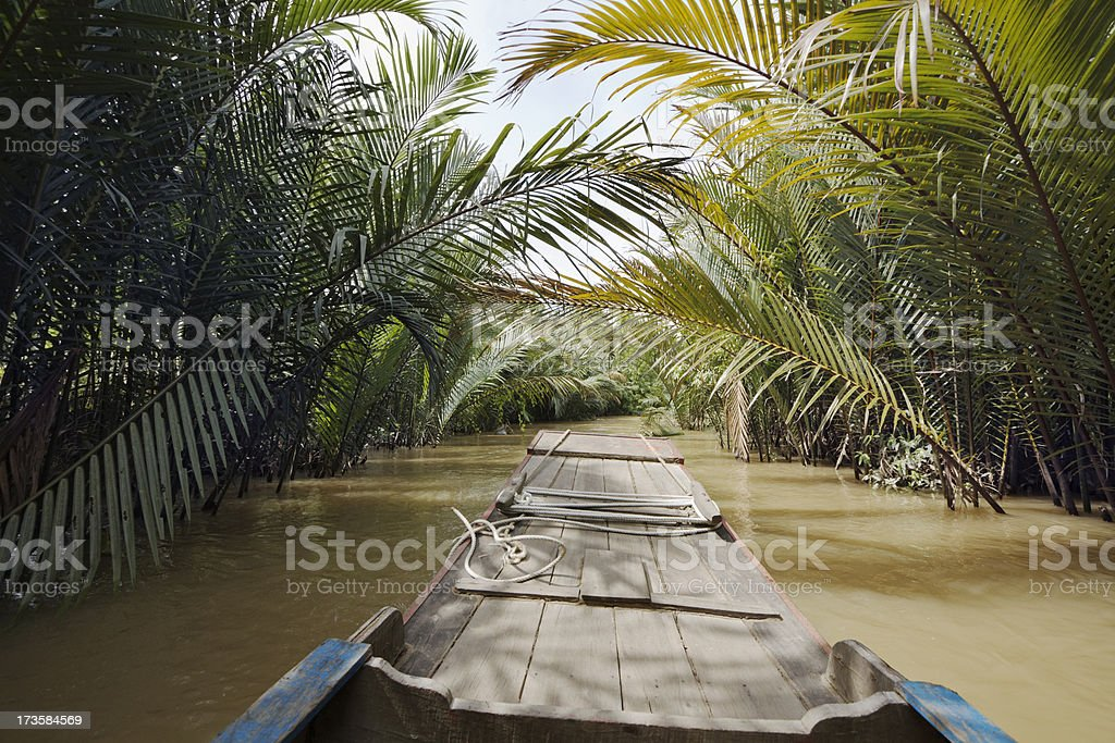 Mekong Delta Boat Ride stock photo