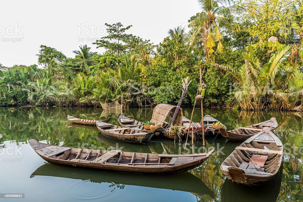 Mekong Delta in Vietnam stock photo