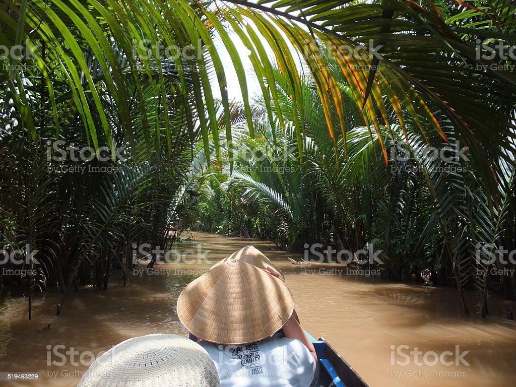 Río Mekong crucero, Vietnam foto de stock libre de derechos