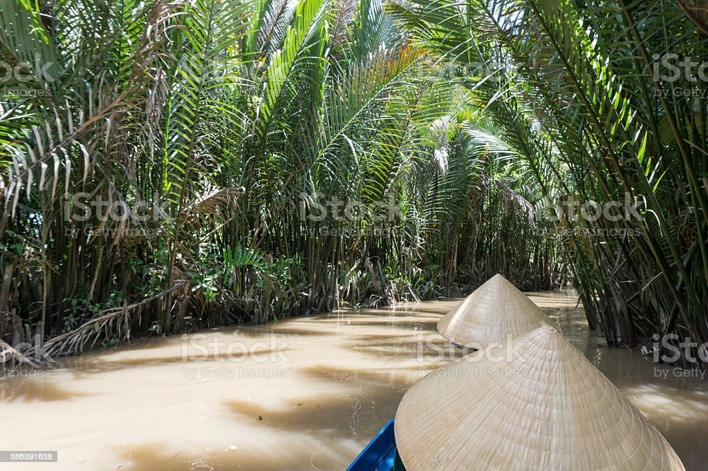 Mekong River Delta jungle cruise in Vietnam stock photo