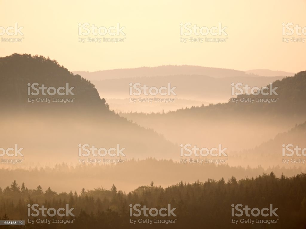 Melancholic morning after rainy night. Valley full of spring mist. stock photo