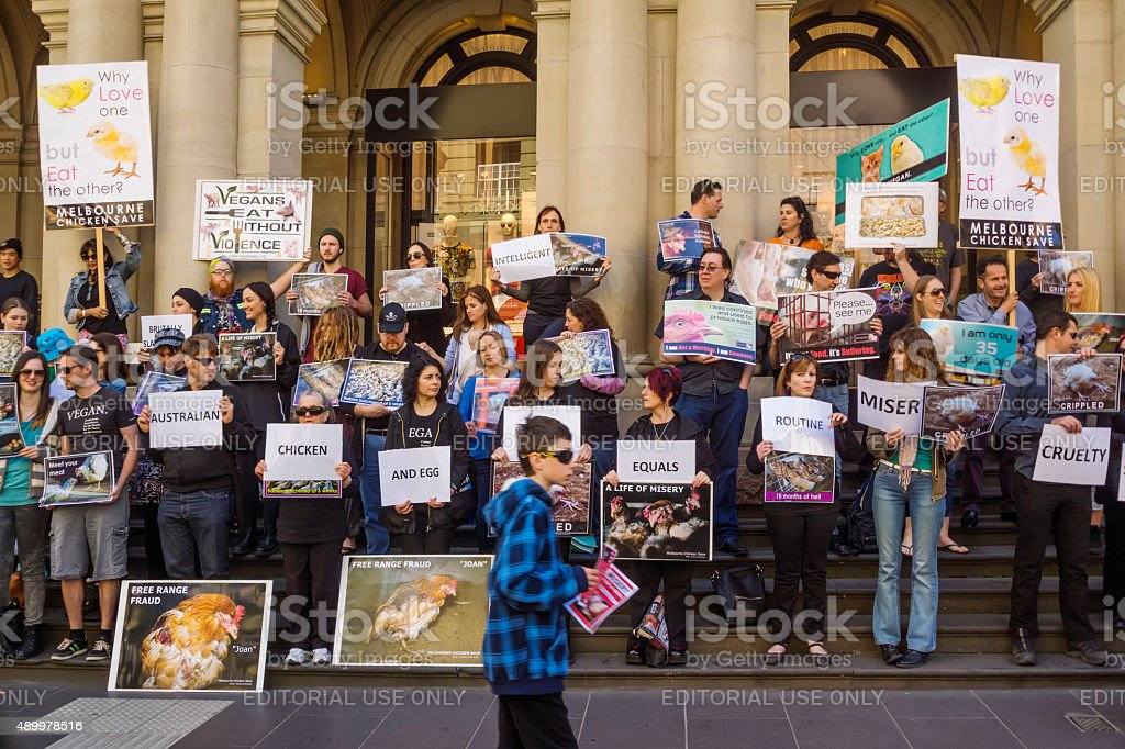 Melbourne Chicken Save Rally stock photo