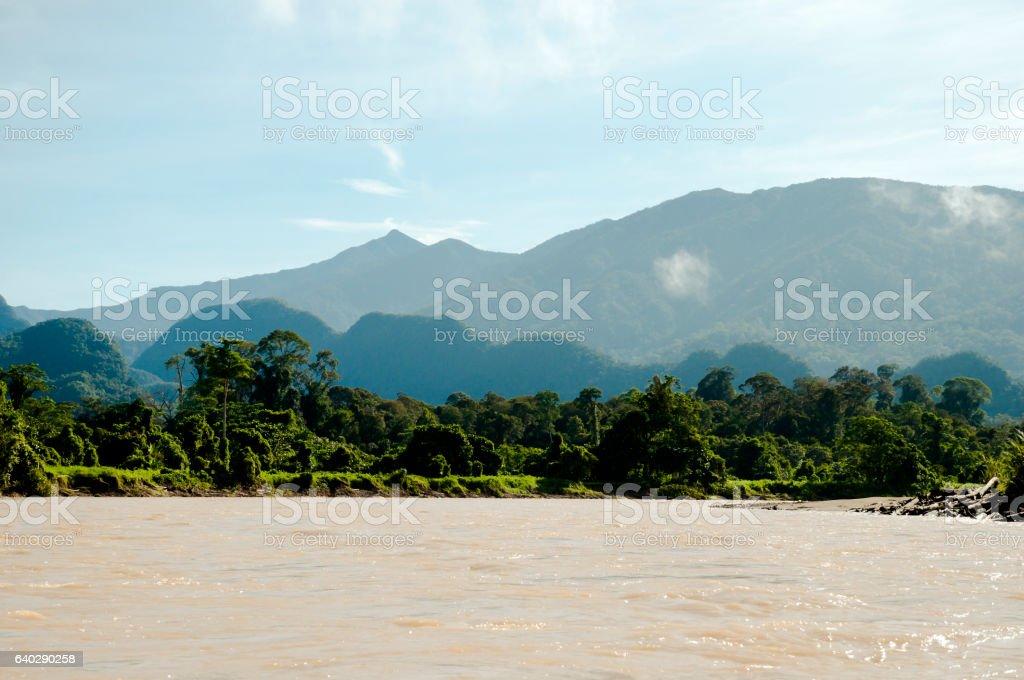 Melinau Paku River - Mulu National Park - Borneo stock photo