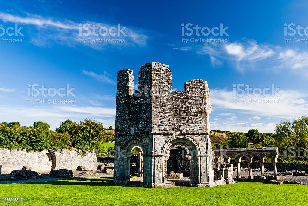 Mellifont Abbey, County Louth, Ireland stock photo
